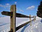 blue sky winter