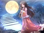 Moon Stair