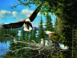 Nesting Eagles F1