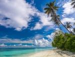 Tropical Paradise, Sabah