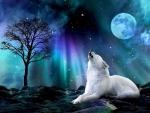 Evening Howl