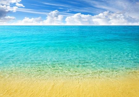 Pristine Caribbean Beach Beaches Nature Background