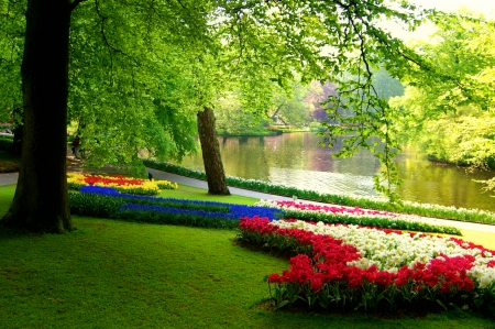 Park in spring - pretty, lovely, grass, beautiful, spring, park, trees, lake, freshness, pond, alleys, green, flowers, nature, branches
