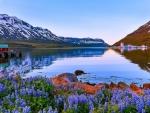 Seydisfjordur Midnight Sun