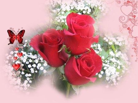 Red roses of love - red roses, babysbreath, butterfly, love, hearts