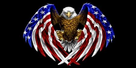 American Bald EagleFreedom