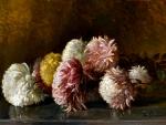 Still Life Of Chrysanthemums
