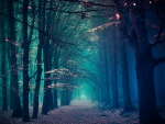 Fantastic Fantasy Forest