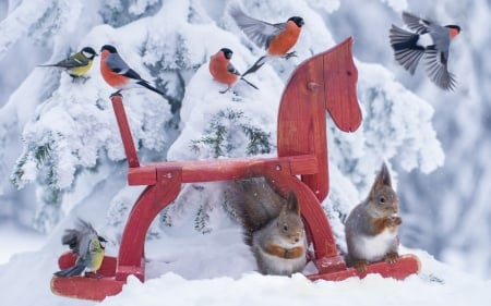 Birds and squirrels - squirrel, toy, horse, animal, winter, bird, snow, emi, white, pink