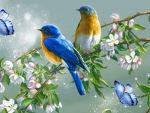 Blue Bird Spring Song