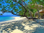 Remote And Exotic Beach