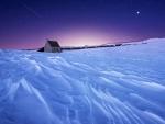 Amazing Winter
