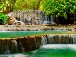 Forest water cascades