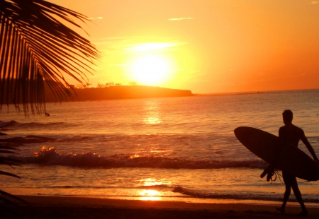 Sunset At Surfers Beach Beaches Nature Background
