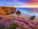 Sunset at the Coast of Cornwall, England