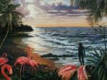 Bahama Flamingos
