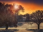 * Winter sunset *