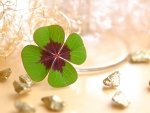 Four Leaf Clover~Good Luck
