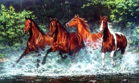 Cascade Run - love four seasons, run, horses, speed, water, strong, summer, wildlife, streams, animals