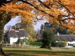Wonderful Autumn scene