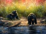 ★Black Bear Cubs★