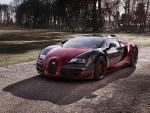 2015 Bugatti Veyron #450