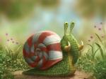 The Elephant Snail :)