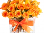 Orange roses in bright vase