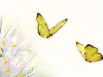 Spring by MaDonna
