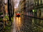 Street_Summer Rain