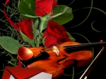 Violin With Red Roses