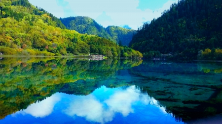 SPRING LAKE - forest, nature, calm, lake