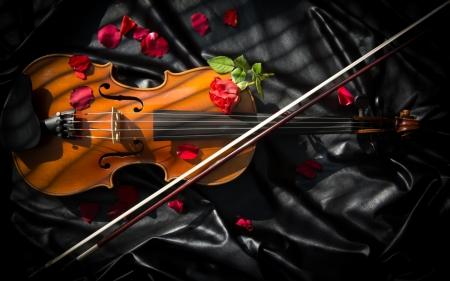 Violin Other Abstract Background Wallpapers On Desktop Nexus