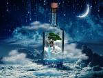 Dream Bottle