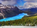 Canadian Mountain Landscape