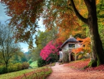 Autumn Colors At The Cottage Garden