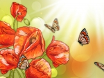Poppies and Butterflies