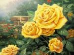 Beautiful yellow roses in the garden