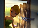 Tinker Bell and the Great Fairy Rescue ( 2010)
