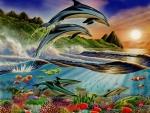 Atlantic Dolphins