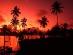 red fijian sunset