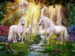 Unicorns in Fairyland