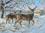 The Winter Deer