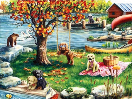 First Fall - dogs, First, Fall, play, nature, puppys