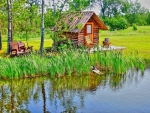 CABIN from a POND