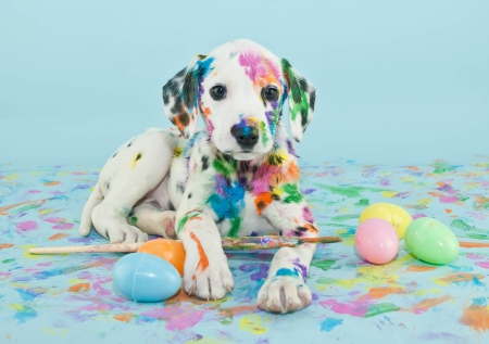 Easter Puppy - Easter, paint, eggs, paint brush, dalmatian, brush, puppy, dog