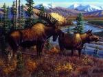 Alaskan Royalty