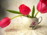 Vintage Tulips.