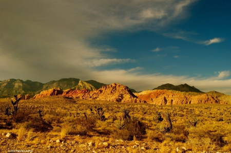 Red Rock Canyon - fun, cool, canyon, nature, mountain