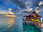 Tropical House At Sunrise